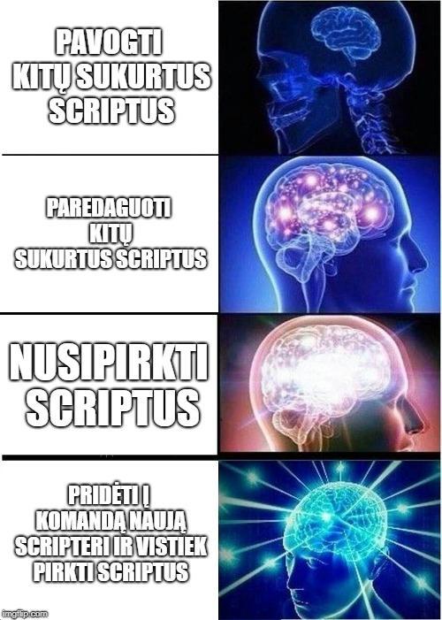 Expanding Brain Meme | PAVOGTI KITŲ SUKURTUS SCRIPTUS PAREDAGUOTI KITŲ SUKURTUS SCRIPTUS NUSIPIRKTI SCRIPTUS PRIDÄTI Ä® KOMANDÄ NAUJÄ SCRIPTERI IR VISTIEK PIRKTI SC | image tagged in memes,expanding brain | made w/ Imgflip meme maker