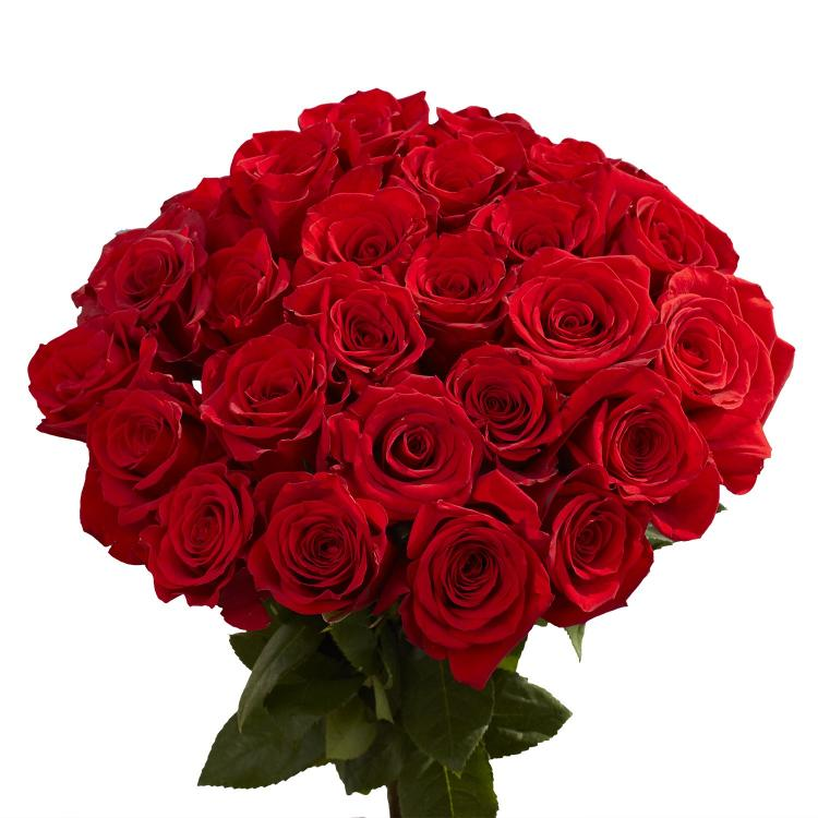 Amazon.com : GlobalRose 100 Red Roses by Christmas- Lovely Fresh Flowers -  Next Day Delivery by Tuesday December 22 : Fresh Cut Format Rose Flowers :  Grocery & Gourmet Food