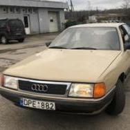 Audi_Rutuliukai