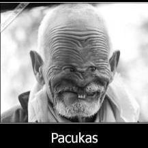 Just_Pukis