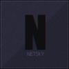 Augis_Netsky