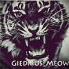 Giedrius_Meow